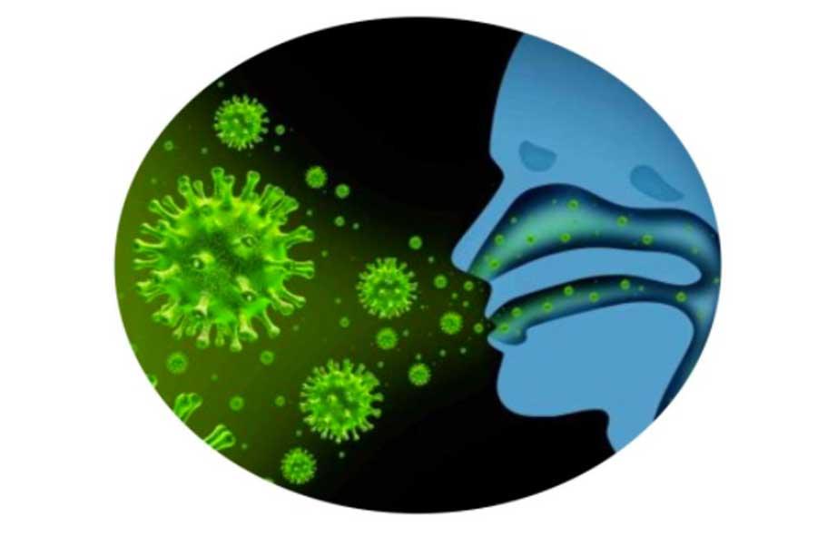Bio Reishi Defence – Rafforza davvero le difese immunitarie? Opinioni dei clienti, dove si compra e prezzo