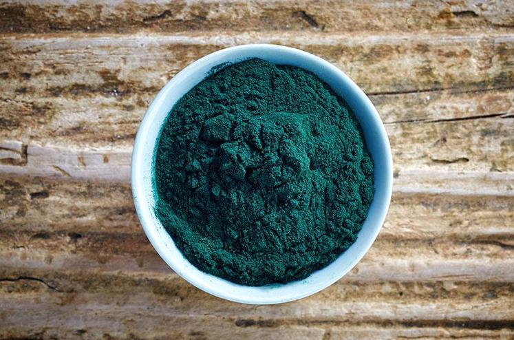Come viene trattata e poi utilizzata l'alga spirulina? Facciamo chiarezza